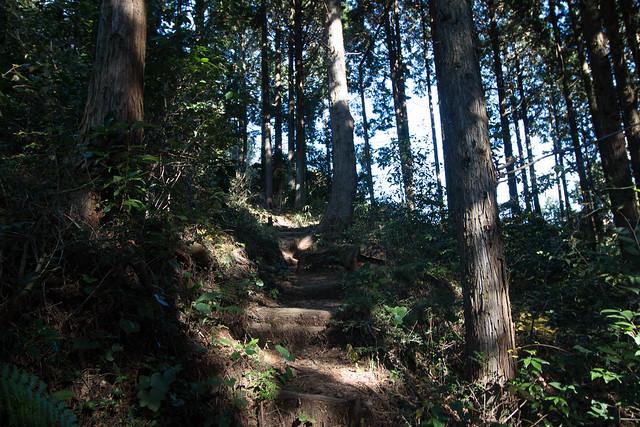 20161210-浜石岳-0162.jpg