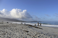 My walk on Carmel Beach