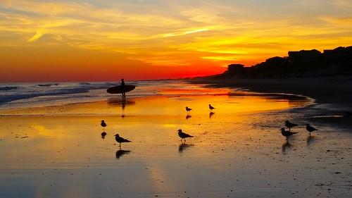 butrovich surfcity topsailisland surfer surfboard beach sunset