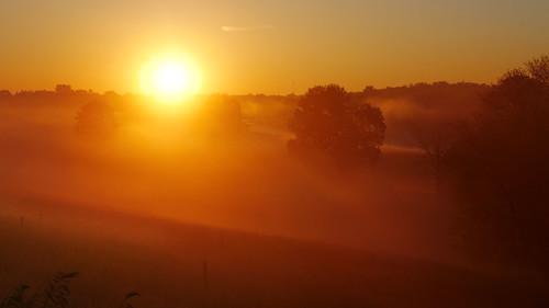 sunrise fog landscape grandriver waterlooregion ontario canada