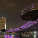 Helix Bridge (Singapore) by rogelio g arcangel