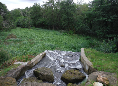 Outflow of Chingford Pond, Burton Park