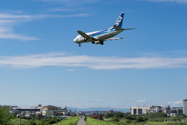 Itami Airport 2017.8.3 (11) JA8504 / ANA WINGS' B737-500