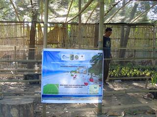 Rumah Bibit BCC di Desa Padak Goar, BCC - MCA Indonesia