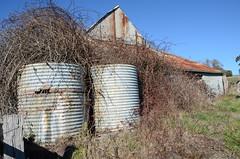 DSC_7565 old water tanks, Mooney barnhaus, Schroeder Road, Hahndorf, South Australia