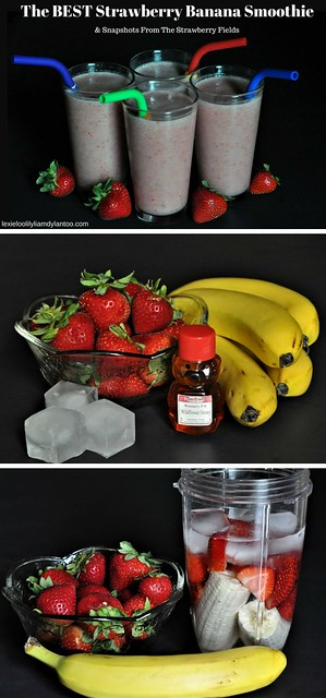 The BEST Strawberry Banana Smoothie Recipe! Just a few basic ingredients - strawberries, bananas, local honey, ice and water. Featuring reusable silicone straws from @GreenPaxx! {partner}