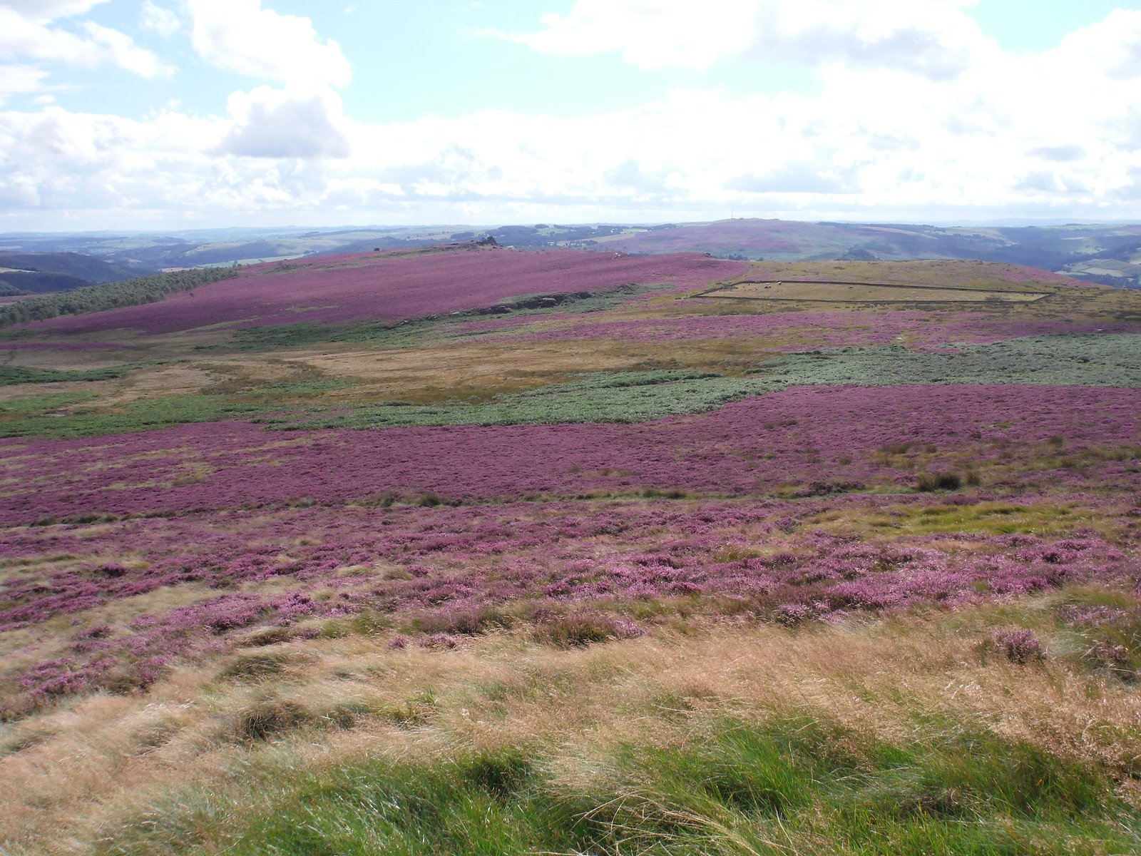 Hathersage Moor from Higger Tor SWC Walk 266 - Sheffield to Bamford (via Burbage Rocks and Stanage Edge) or to Moscar Lodge [via Carl Wark and Higger Tor Alternative]