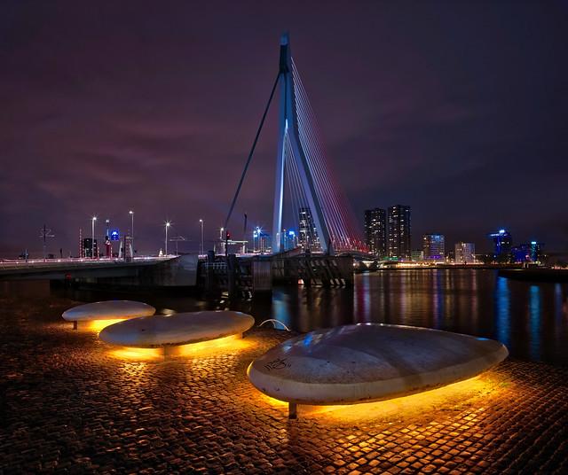 Midnight Walk In Rotterdam