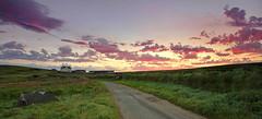 Godrevy Farm Sunrise