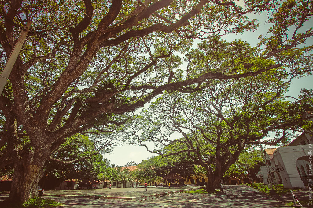 SL-Galle-Fort-canon-1500px-025