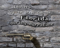 Looters Try to Steal Guns in Florida during Hurricane