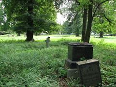 Олика. Старий цвинтар.