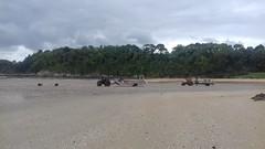 St-Cast plage des 4 Vaux (15)