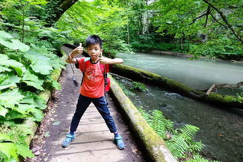 奧入瀨溪健行