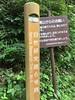 冒険家の大蔵喜福さんと行く「高尾山・親子森育ハイキング」