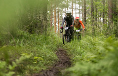 Enduro MTB drivers in the forest