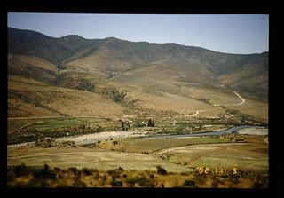 Vegetation In Semi-arid Zone In Chile = 乾燥地の植生