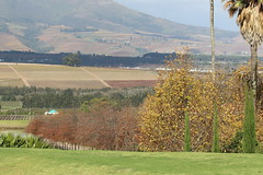 Stellenbosch - Cape Town - África do Sul
