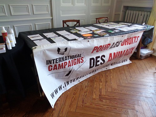 internationalcampaigns a posté une photo :