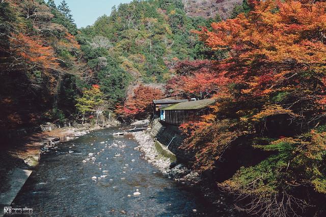 十年,京都四季 | 卷五 | 京都與我,有時還有關西 | 10