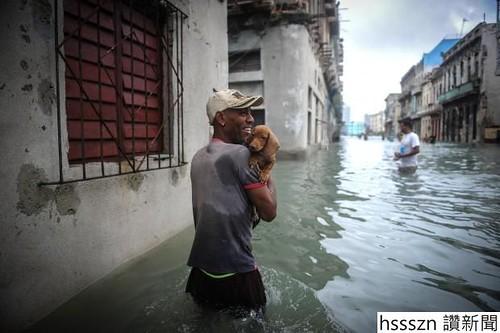 hurricane-irma-pets_620_413