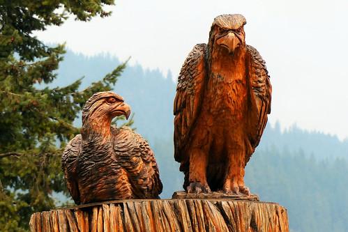lumix fz200 kaslo britishcolumbia canada cans2s wood carving sculpture birds eagles outdoor art explore 10000views