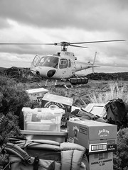 An expedition underway on Stewart Island