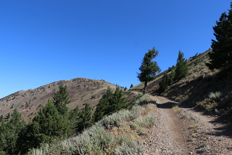 The Dixie Butte Summit is up ahead of us, with a lookout tower and radio antennas