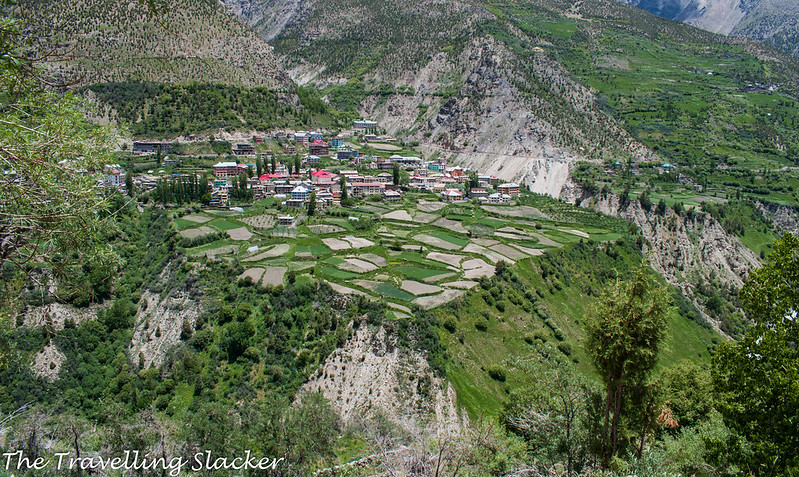 Kardang Monastery (11)