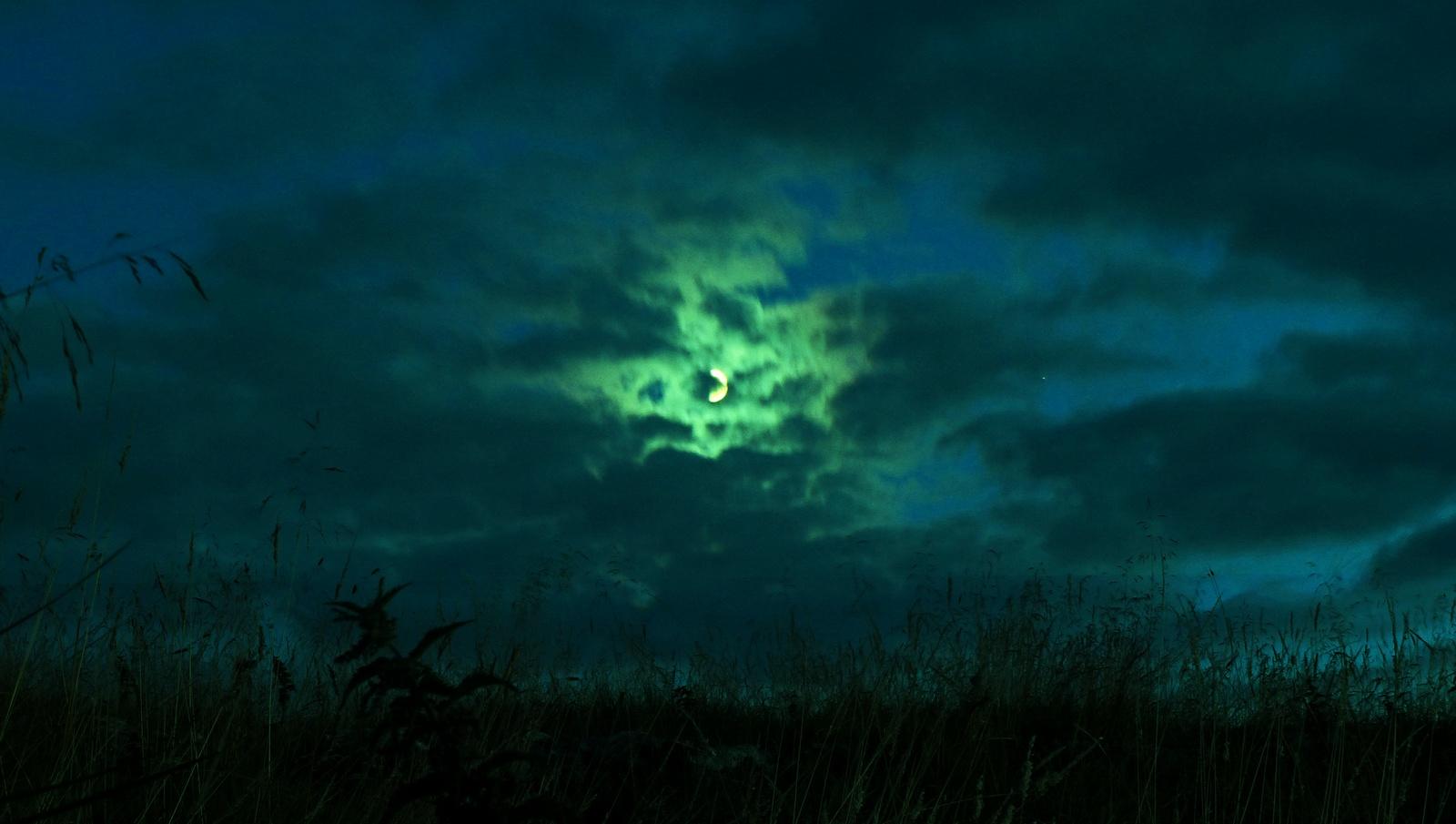 Settled Moon