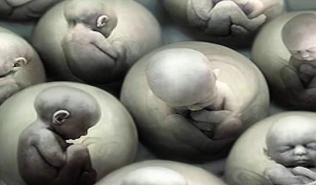 tasarım bebekler