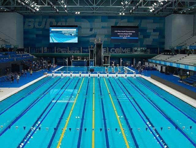 massimo ronco ai mondiali di nuoto