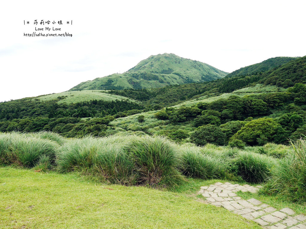 陽明山一日遊景點推薦絹絲瀑布步道 (22)