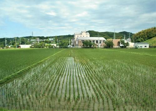jp-Kannoura-Tokushima-train (16)