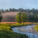 Foggy river panorama by fedorlashkov