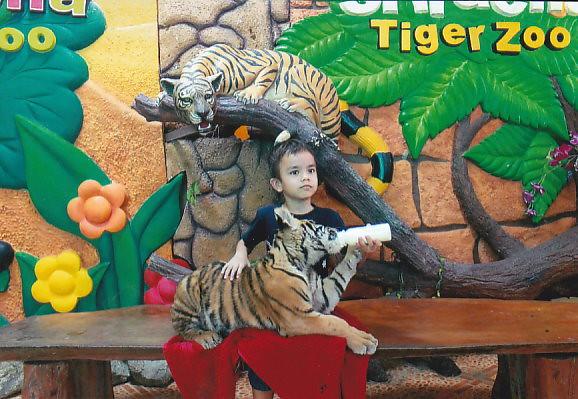 Siracha Tiger zoo near Pattaya