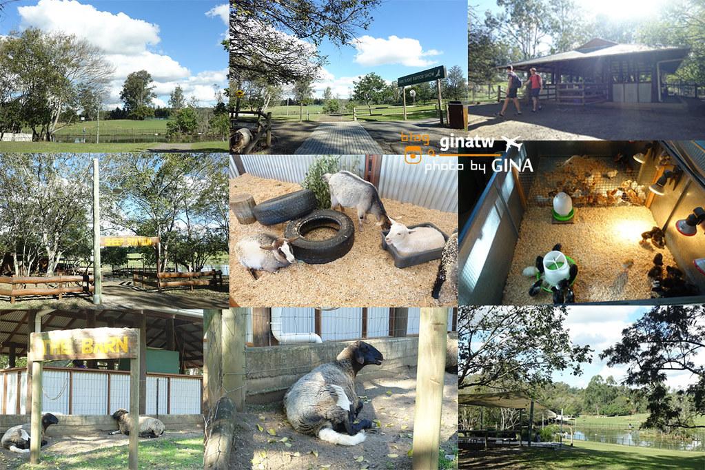 【布里斯本自由行】龍柏動物園門票優惠|抱無尾熊、澳洲袋鼠|Lone Pine Koala Sanctuary|澳洲景點、野餐! @GINA環球旅行生活|不會韓文也可以去韓國 🇹🇼