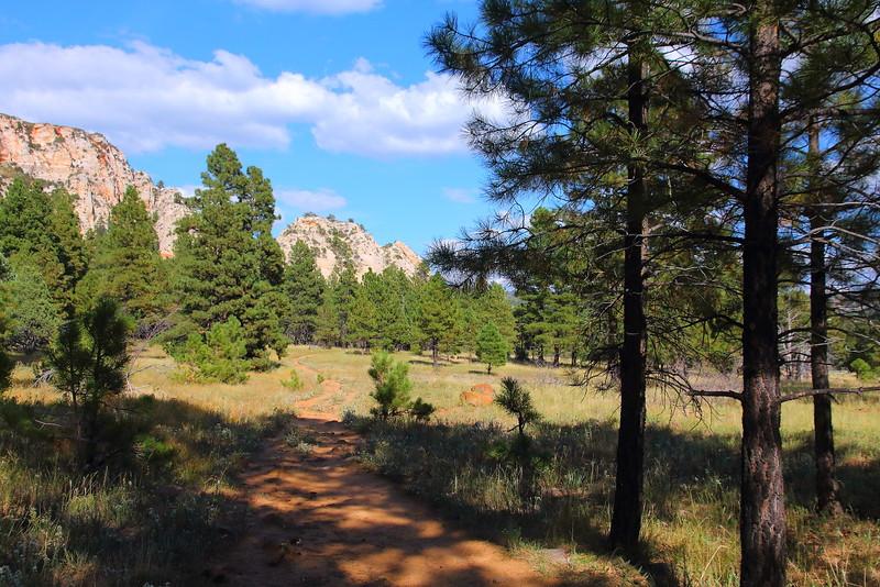 IMG_1285 Northfate Peaks Trail