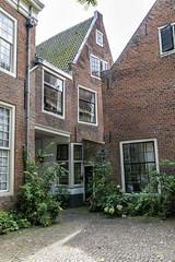 A morning in Haarlem, Netherlands (last part)