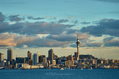 Auckland Waterfront  26