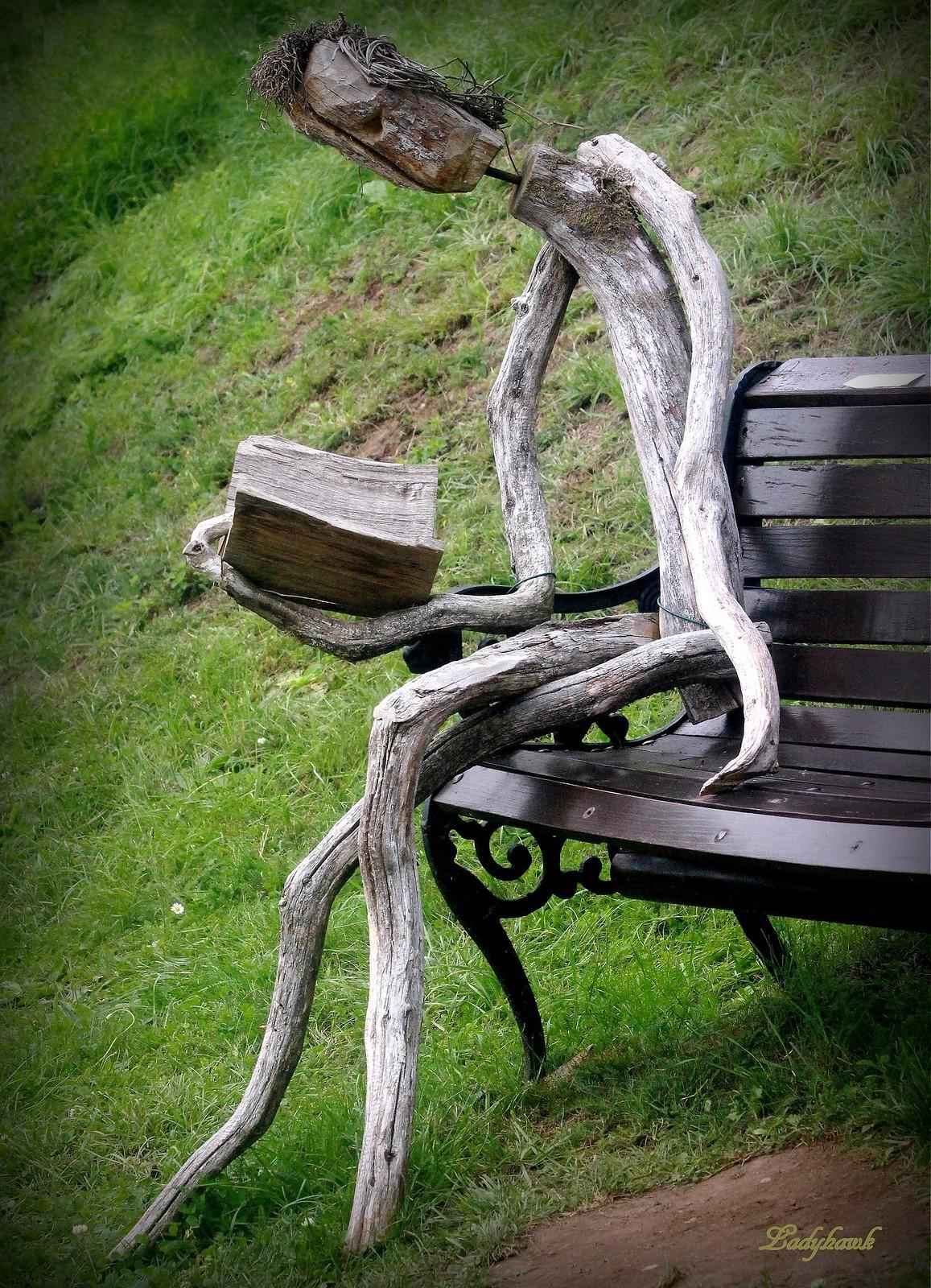 l'arbre vivant, Canon EOS 700D, Canon EF 70-300mm f/4-5.6 IS USM