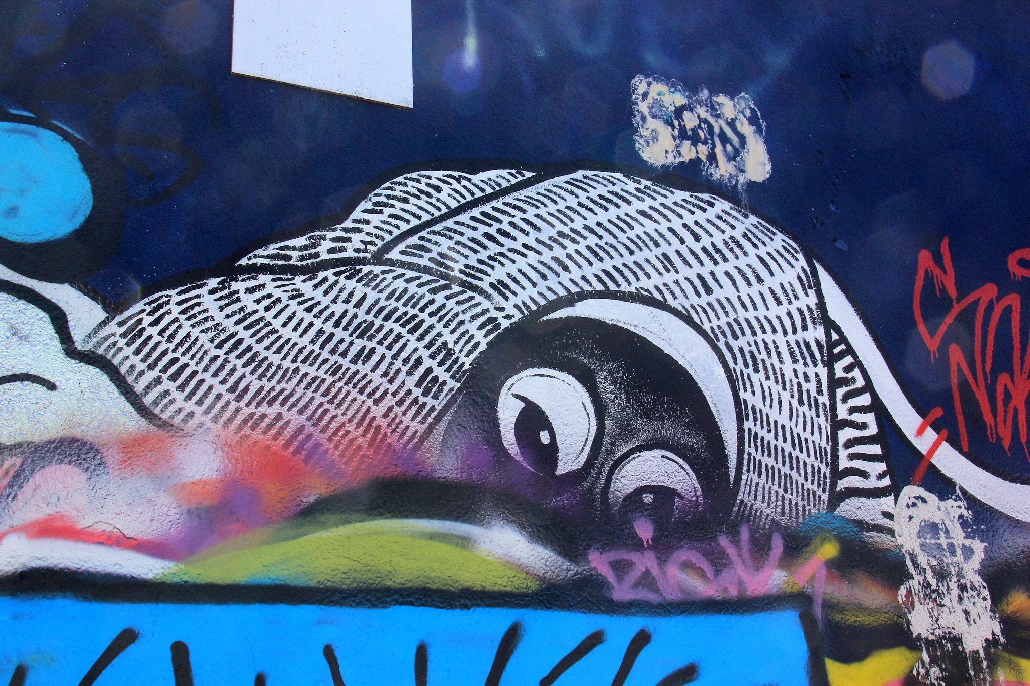 Ghent street art is organised