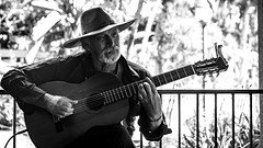 0246937235-92- Pickin Old Cowboy Songs in Balboa Park San Diego-2-Black and White