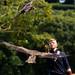 International Birds of Prey Centre (71)