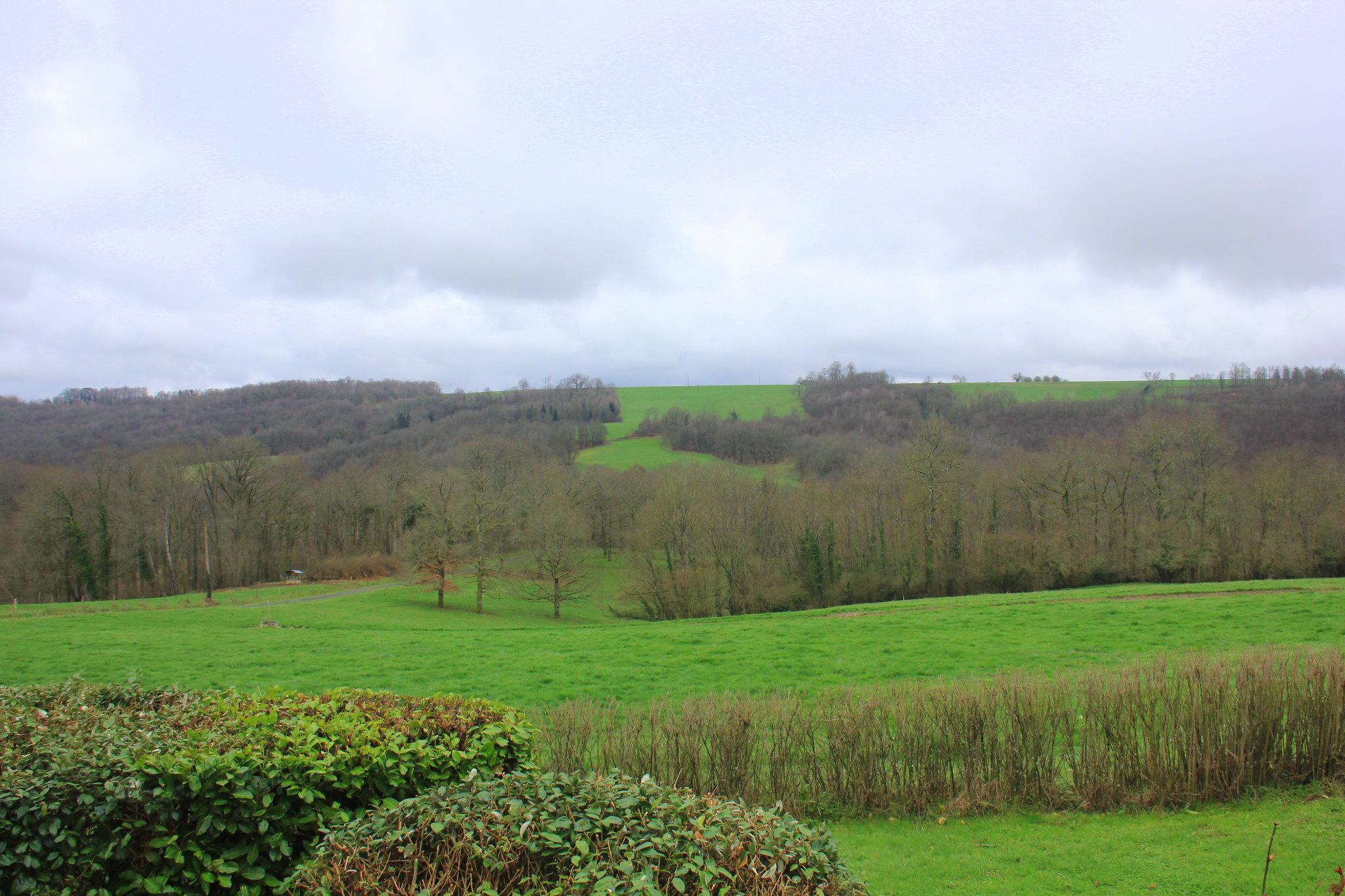 Fresh misty green hills of dordogne in spring