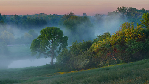 fog mist river sunrise landscape grandriver waterlooregion ontario canada