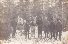 RPPC AXE MEN AND DRIVERS Hard Working Sturdy Michigan Lumberjacks  and their Draft Horse Team believe the location to be in Traverse Kalkaska or Benzie County possible A. B. Case Crew