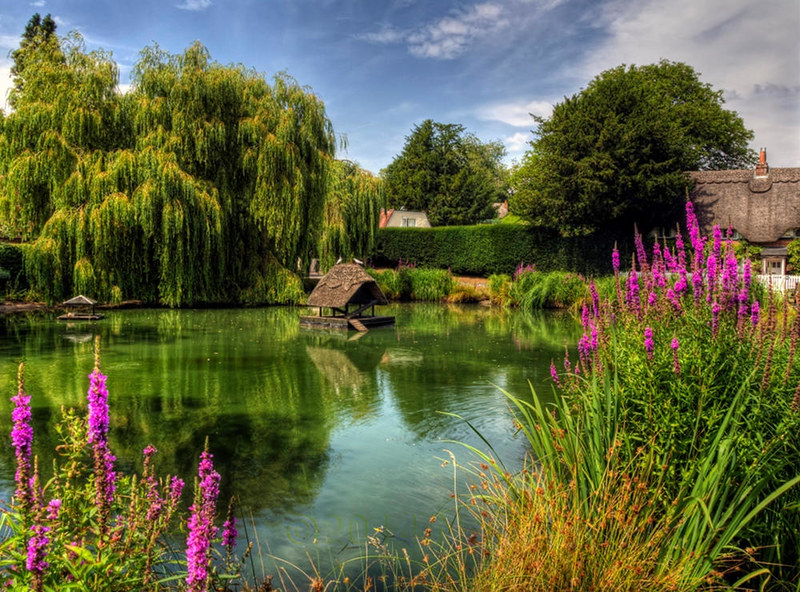 The Duckpond at Crawley, near Winchester. Credit Neil Howard, flickr