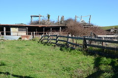 DSC_7564 outbuildings, Mooney barnhaus, Schroeder Road, Hahndorf, South Australia