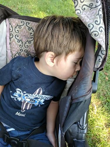 Stroller Nap